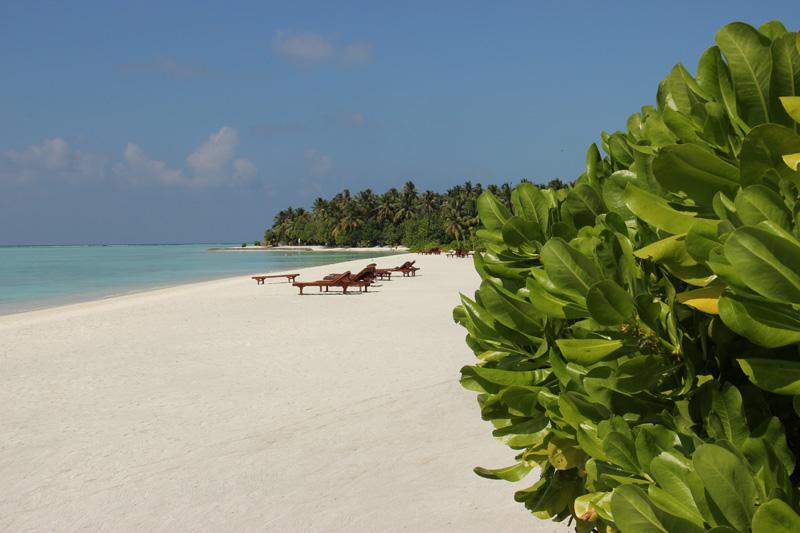 Srí Lanka a Maledivy 2014